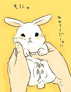 oh my gosh image + text too cute i'm such a nerd for being able to understand that but still     ------ bunny illustration