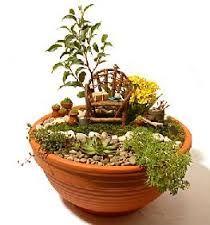 jardines de cactus pequeños - Buscar con Google