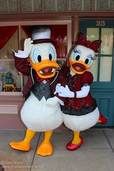 Disneyland Halloween ~ Donald & Daisy