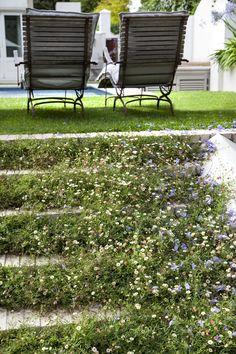 Designer: Tirzah Stubbs Style: Classical Garden Type: Private Garden Garden Types, Private Garden, South Africa, Gardens, Outdoor Structures, Design, Style, Swag, Outdoor Gardens