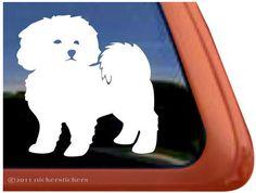 Die 8 besten Bilder von Hunde in 2017   Hunde, Weißer ...