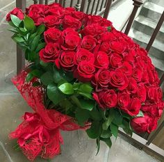 Flowers for you! Let's your life be so beautiful like these flowers! Beautiful Rose Flowers, Wonderful Flowers, Flowers For You, Beautiful Flowers, Red Rose Arrangements, Luxury Flowers, Flower Wallpaper, Flower Boxes, Red Roses