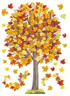 Fall Clip Art, Tree Clipart, School Frame, Fall Crafts For Kids, Fall Pictures, Reggio Emilia, Autumn Trees, Trees To Plant, Diy Gifts