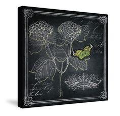 Chalkboard Botanical I Canvas Wall Art – Laural Home