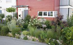 Eine Natursteinmauer, dazu Lavendel und andere Trockenkünstler – fertig ist ein moderner Vorgarten mit natürlichem Flair