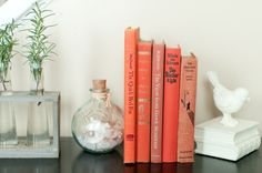 Set of 5 Coral Books with vase and bookend