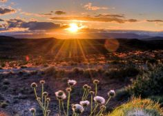 SW Sunrise - Zion NP Background | Flickr - Photo Sharing!