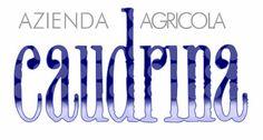 La Caudrina di Romano Dogliotti - Castiglione Tinella (AT) Italy