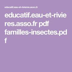 educatif.eau-et-rivieres.asso.fr pdf familles-insectes.pdf