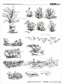 Home Decorating Online Games Referral: 4062001948 Landscape Architecture Drawing, Landscape Sketch, Landscape Drawings, Landscape Design, Art Drawings, Plant Sketches, Tree Sketches, Dessin My Little Pony, Nature Sketch