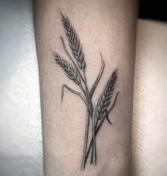 Detailed Shaded Male Wheat Wrist Tattoos