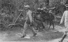 """""""227. Una parte de una pieza de 75mm a lomo de mula."""" Álbumes de fotografias del Dr. De Sanctis, un medico argentino voluntario en la Guerra del Chaco. 1932. Cortesía:  Fundacion HISTARMAR, Buenos Aires (Argentina)"""