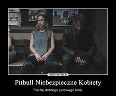 Pitbull Niebezpieczne Kobiety – Trochę dobrego polskiego kina.