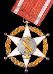 national order of merit badge brazil red ribbon  globe