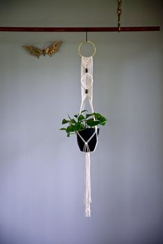 """Macrame Plant Hanger - 42"""" Knotted - Natural White Cotton Rope - Indoor Hanging Planter w/ 4"""" Brass Ring & Wooden Beads"""