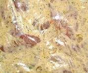 Grillmarinade für Schweinefleisch. ..altes DDR- Rezept