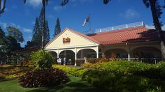 Dole Plantation...fun day trip Oahu at tikesintow.com