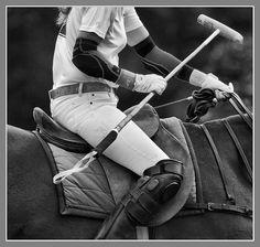 polo                                                                                                                                                           IMG_1527-Edit_fhdr polo                                                                    ..