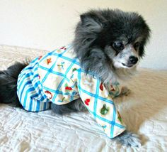 Small Canine's Pajamas Flannel Poky Little Puppy Print - Multicolored Custom for Pomeranian Size https://www.etsy.com/listing/97504985/small-canines-pajamas-flannel-poky?ref=teams_post