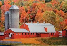 Beautiful barn in the fall