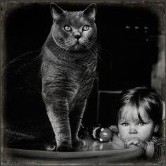 Una hermosa historia deuna pequeña ysus dos gatos