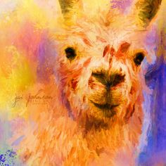 Open edition Jazzy Llama canvas art print by Jai Johnson © Jai Johnson | JaiArt.Com - All Rights Reserved  Choose your desired print size below.  Artist watermark will NOT appear on purchased prints.  Production takes 2-4 business days.  Shipping is free.  About Our Canvas Prints   Our canvas prints are created on an acid-free, pH neutral, poly-cotton matte base canvas with archival inks. A matte protective clear coat is applied, preserving it's original matte appearance and making it the…