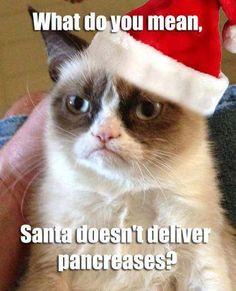 #grumpycat #diabetes #diabetic #pancreas #santa #christmas #health #diabetesmeme #meme