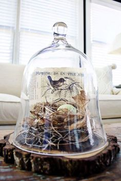 Over 25 bird nest decorating ideas for you to add some natural decor to your home. Great tips on how to make decorative bird nest yourself or how to style real bird nests you may have collected. Plus a few recipes for edible bird nests! Easter Crafts, Kids Crafts, Easter Decor, Bird Nest Craft, Bird Nests, Cloche Decor, Deco Boheme Chic, Deco Champetre, Spring Books