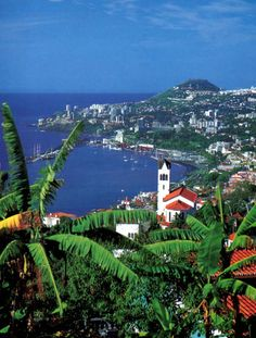 Dit is Madeira .Het is een eilandje in Portugal. Hier is Cristiano Ronaldo… Visit Portugal, Portugal Travel, Spain And Portugal, Funchal, Wonderful Places, Beautiful Places, Amazing Places, Tahiti, Ponta Delgada