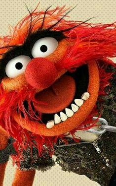 Sesame Street Muppets, Sesame Street Characters, Animal Muppet, The Muppet Show, Muppet Babies, Bd Comics, Kids Tv, Family Halloween Costumes, Jim Henson