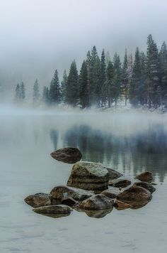 Morning mist (no location given) by Bon Koo
