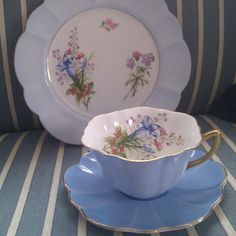 Shelley Stratford shape cup and saucer with salad plate