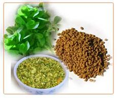 There are many health benefits of fenugreek herb tea, the tea regulates blood sugar levels by slowing the rate that sugar enters the body. Fenugreek is known for its ability to increase breast size and fullness by actually helping to grow breast tissue! A natural breast augmentation from a traditional herb.