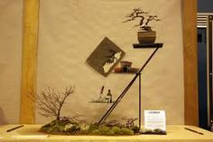 shelf bonsai - Google Search