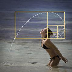 Serie Fibonacci. Maravillosa representación gráfica.