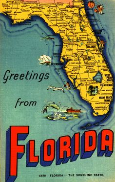 """""""Greetings from Florida!"""" Postcard Collection.  Florida Memory. Love the old and newer Florida postcards. Have a large collection that keeps growing. lol"""