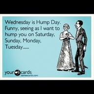 happy hump day e card Funny Hump Day Memes, Hump Day Humor, New Memes, Funny Cute, The Funny, Hilarious, Funny Shit, Funny Stuff, Just For Laughs