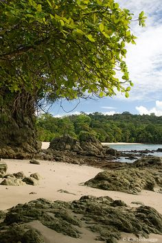 Playa Manuel Antonio, Manuel Antonio National Park, Costa Rica :) love it there Puntarenas, Beautiful World, Beautiful Places, Living In Costa Rica, Costa Rica Travel, Panama City Panama, Beach Photos, Costa Rika, Central America
