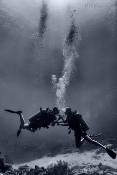 underwater photography lovers bubbles diving scuba scubadiving indonesia romantic light sun water love