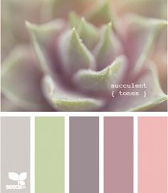 Blush, mauve, mint green and taupe colour scheme