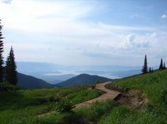 Schweitzer - MTB Trails