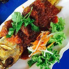 ปลาเก๋าราดพริก