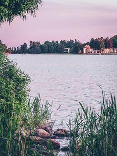 Vadelma-salmiakkijäätelö (ilman jäätelökonetta) – Viimeistä murua myöten River, Outdoor, Italia, Outdoors, Outdoor Games, The Great Outdoors, Rivers