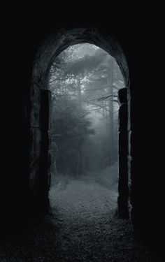 Gateway to the wood