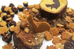 Frances Secret Squirrel Cake fromThe Great British Bake Off