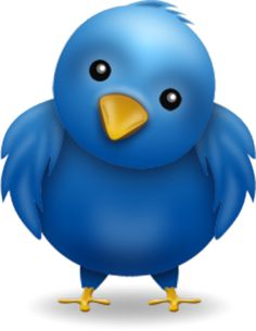 Using Twitter to Build a Successful Direct Sales Business. How do I use this thing with the bird and that hashtag thingy?