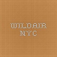 wildair.nyc
