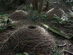 Nature Design Art Andy Goldsworthy 35 Ideas For 2019 Outdoor Sculpture, Outdoor Art, Wood Sculpture, Andy Goldsworthy Art, Wow Art, Weaving Art, Environmental Art, Installation Art, Art Installations