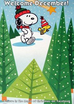 Welcome December - Snoopy and Woodstock in Christmas Tree Forest Wearing Winter Caps With Shooting Star in Background Snoopy Feliz, Snoopy Frases, Snoopy Und Woodstock, Snoopy Quotes, Peanuts Quotes, Peanuts Christmas, Charlie Brown Christmas, Charlie Brown And Snoopy, Winter Christmas