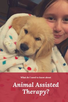 Learn what animal assisted therapy is and how it is used to help people during therapy sessions. What are the benefits of therapy dogs? Horse Therapy, Therapy Dogs, Dog Training, Training Online, Self Advocacy, Health And Wellbeing, Mental Health, Diabetic Dog, Dog Activities